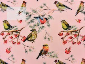 Softshell Stoff Vögel zartrosa