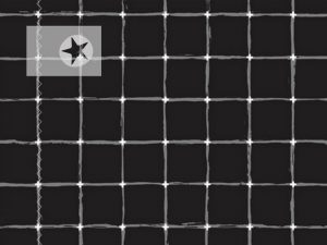 Art Gallery Baumwolle Grid schwarz grau