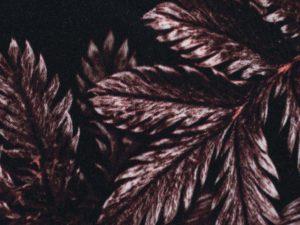 Dark Leaves by Thorsten Berger | Viskose Webware | bordeaux